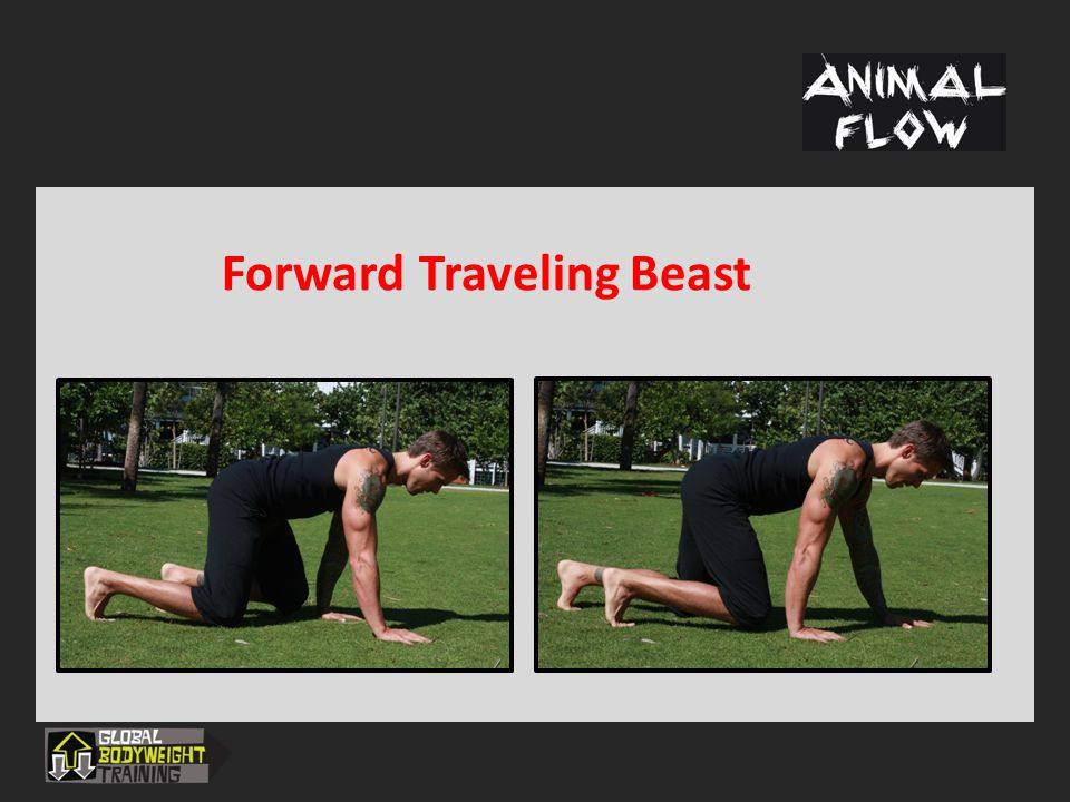 Forward Traveling Beast