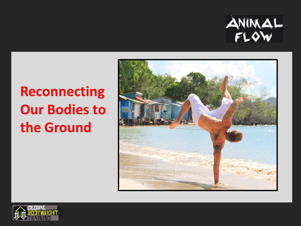 Reconnecting Our Bodies to the Ground