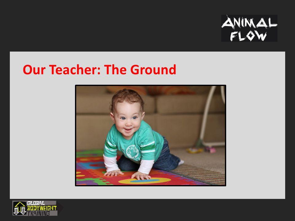 Our Teacher: The Ground