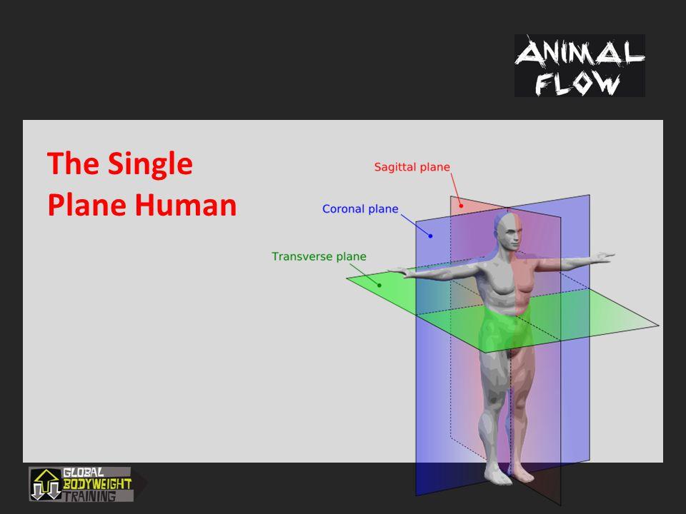 The Single Plane Human