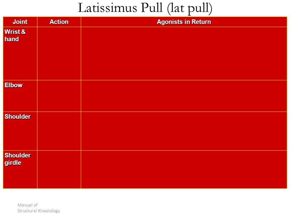 Latissimus Pull (lat pull)