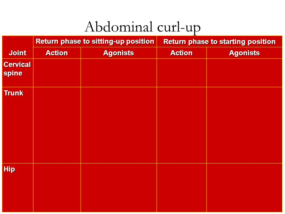 Return phase to sitting-up position Return phase to starting position
