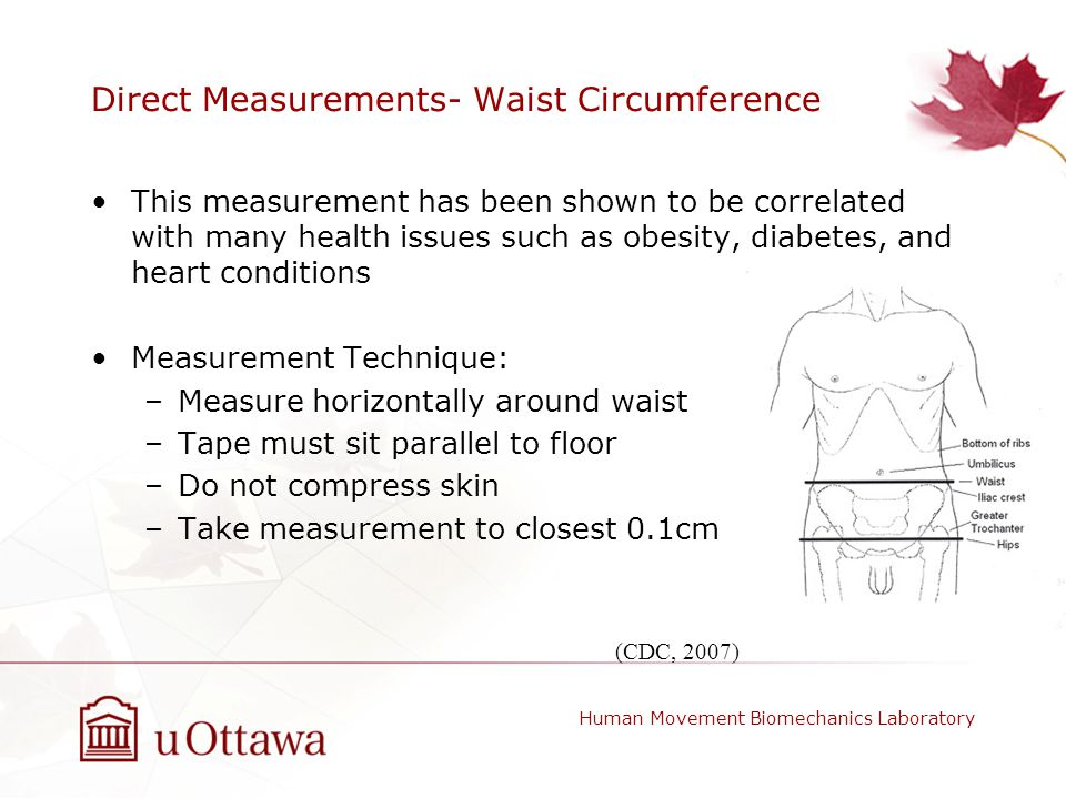 Direct Measurements- Waist Circumference