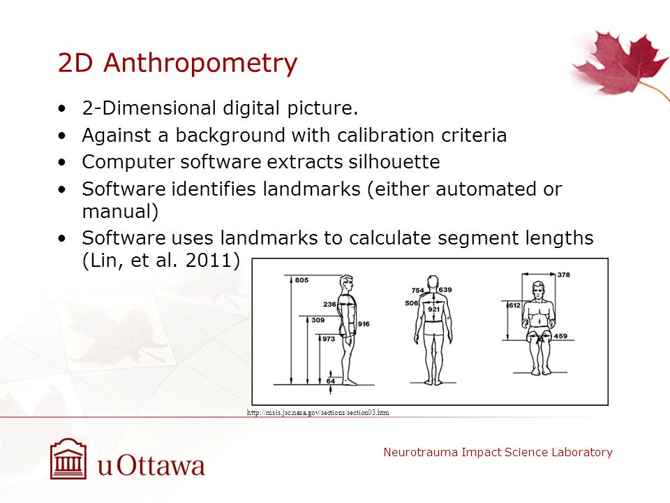 2D Anthropometry 2-Dimensional digital picture.