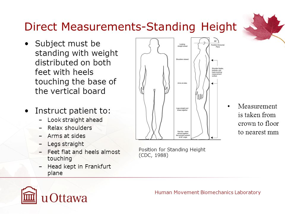 Direct Measurements-Standing Height