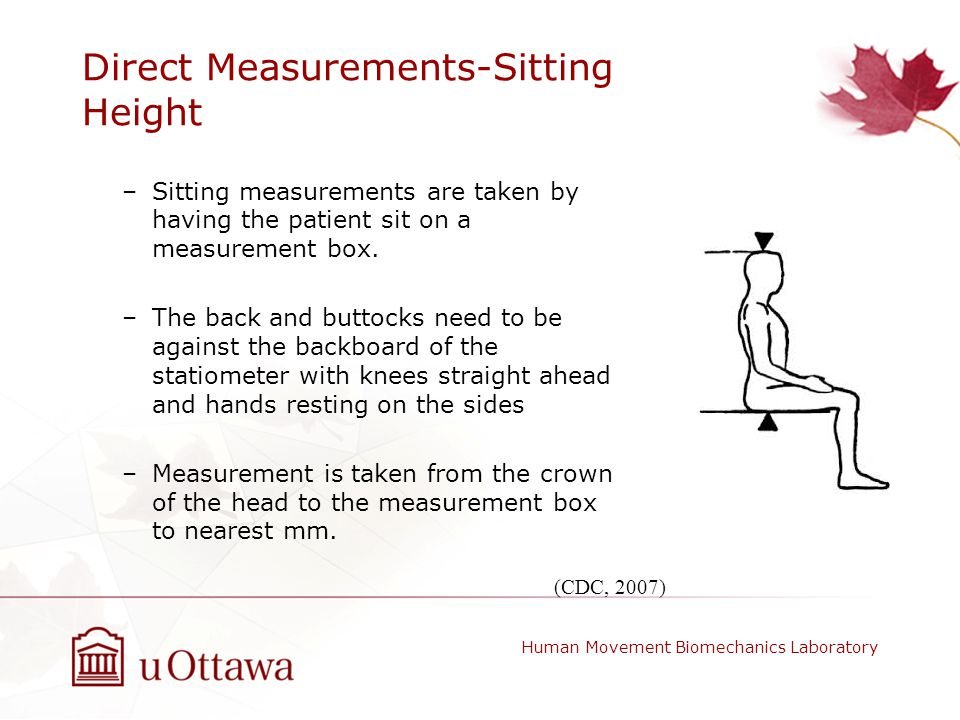Direct Measurements-Sitting Height