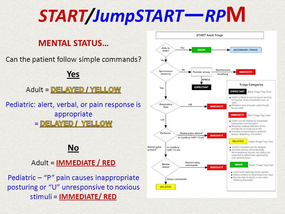 START/JumpSTART—RPM MENTAL STATUS… Yes No
