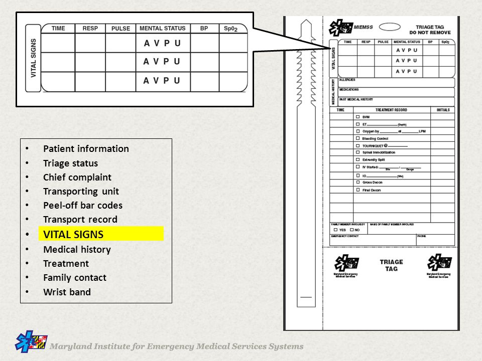 VITAL SIGNS Patient information Triage status Chief complaint