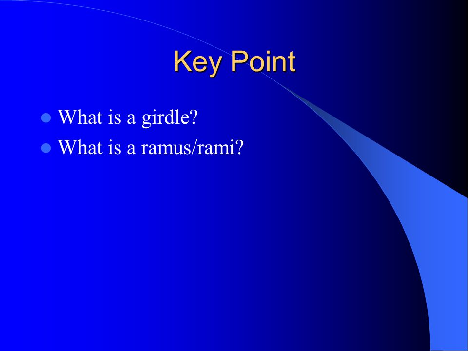 Key Point What is a girdle What is a ramus/rami
