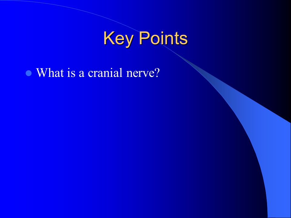 Key Points What is a cranial nerve