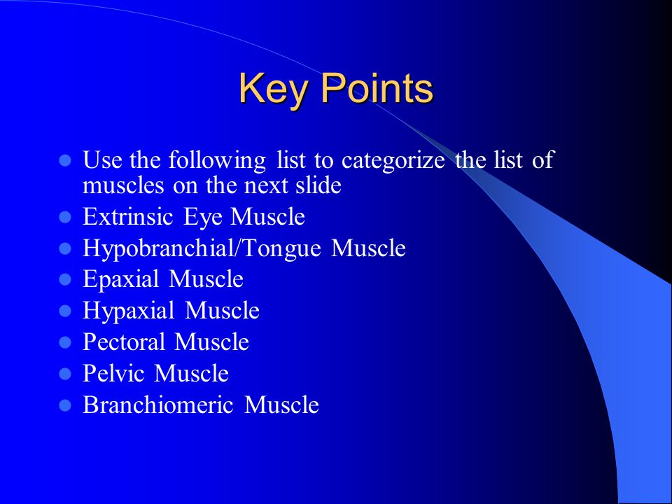 Key Points Use the following list to categorize the list of muscles on the next slide. Extrinsic Eye Muscle.