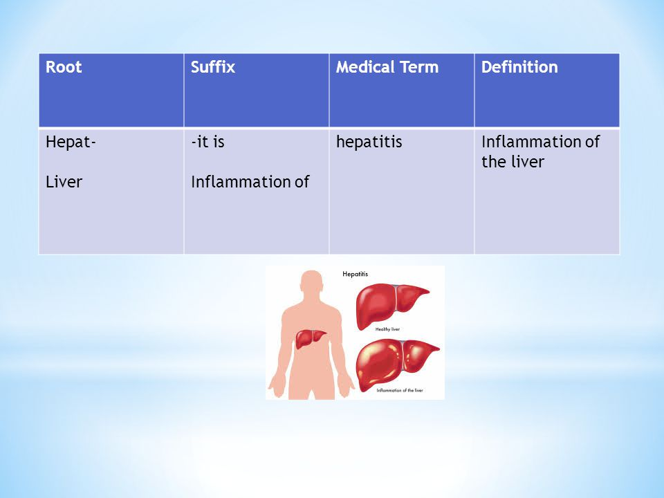 Root Suffix. Medical Term. Definition. Hepat- Liver.