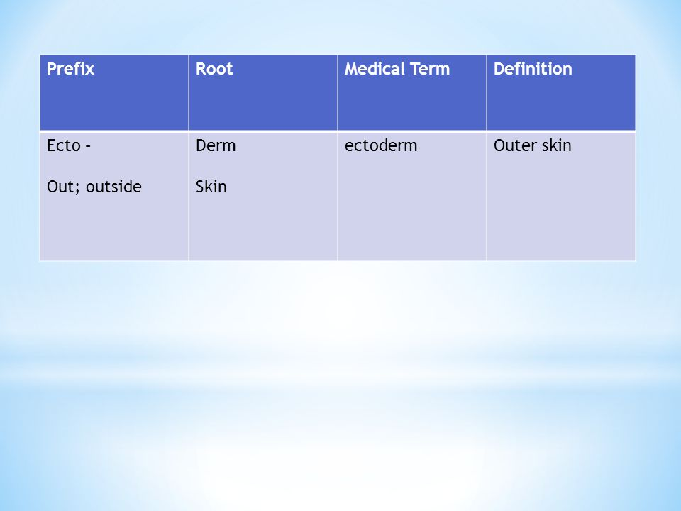 Prefix Root Medical Term Definition Ecto – Out; outside Derm Skin ectoderm Outer skin