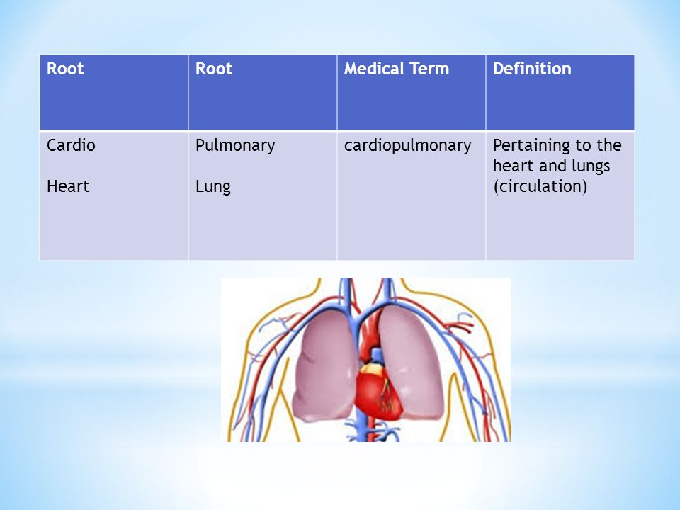 Root Medical Term. Definition. Cardio. Heart.