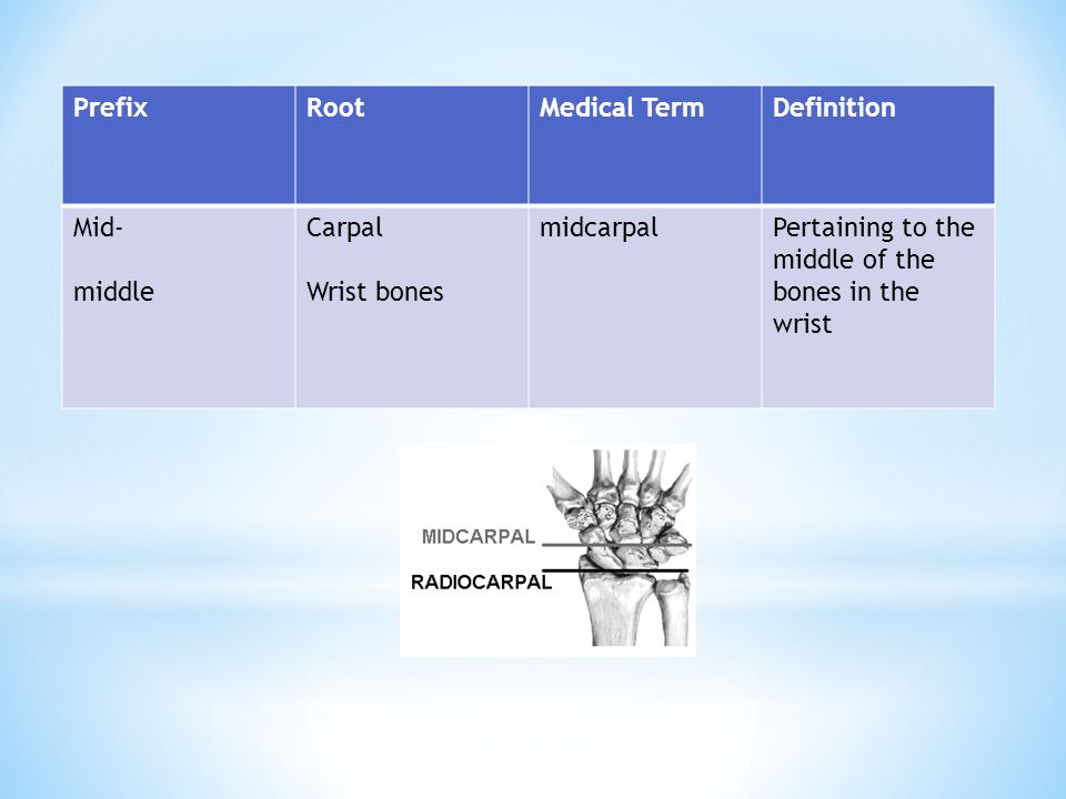 Prefix Root. Medical Term. Definition. Mid- middle.