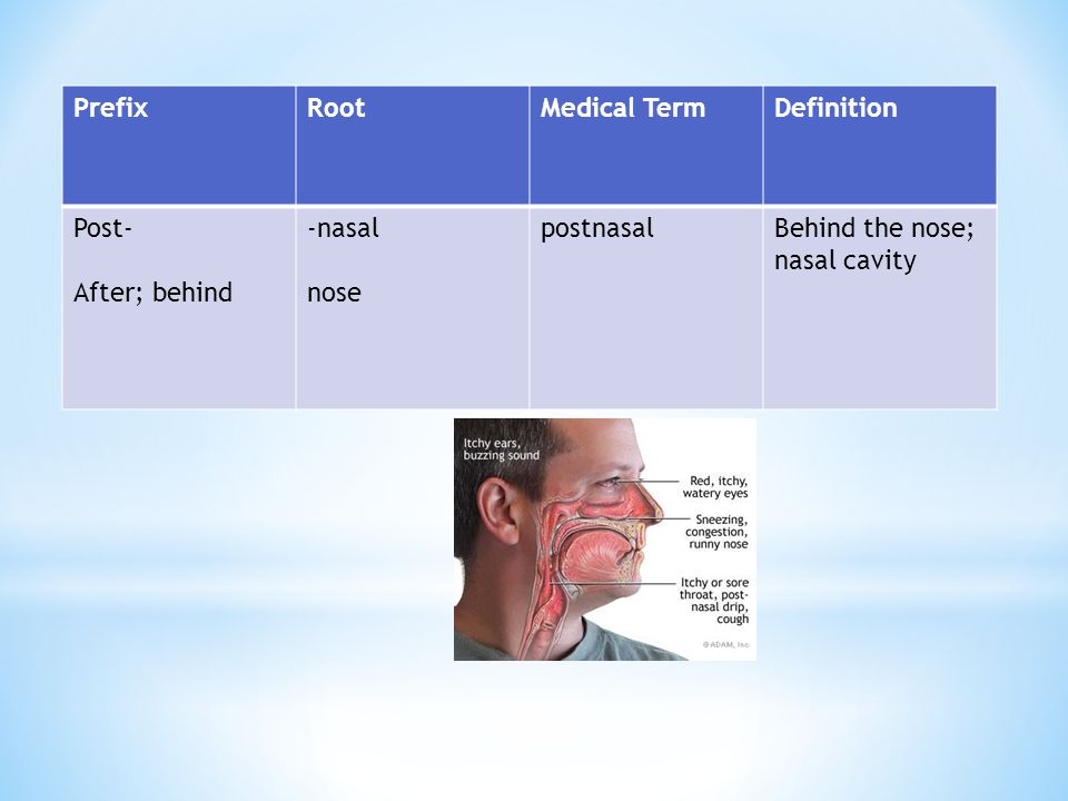 Prefix Root. Medical Term. Definition. Post- After; behind.