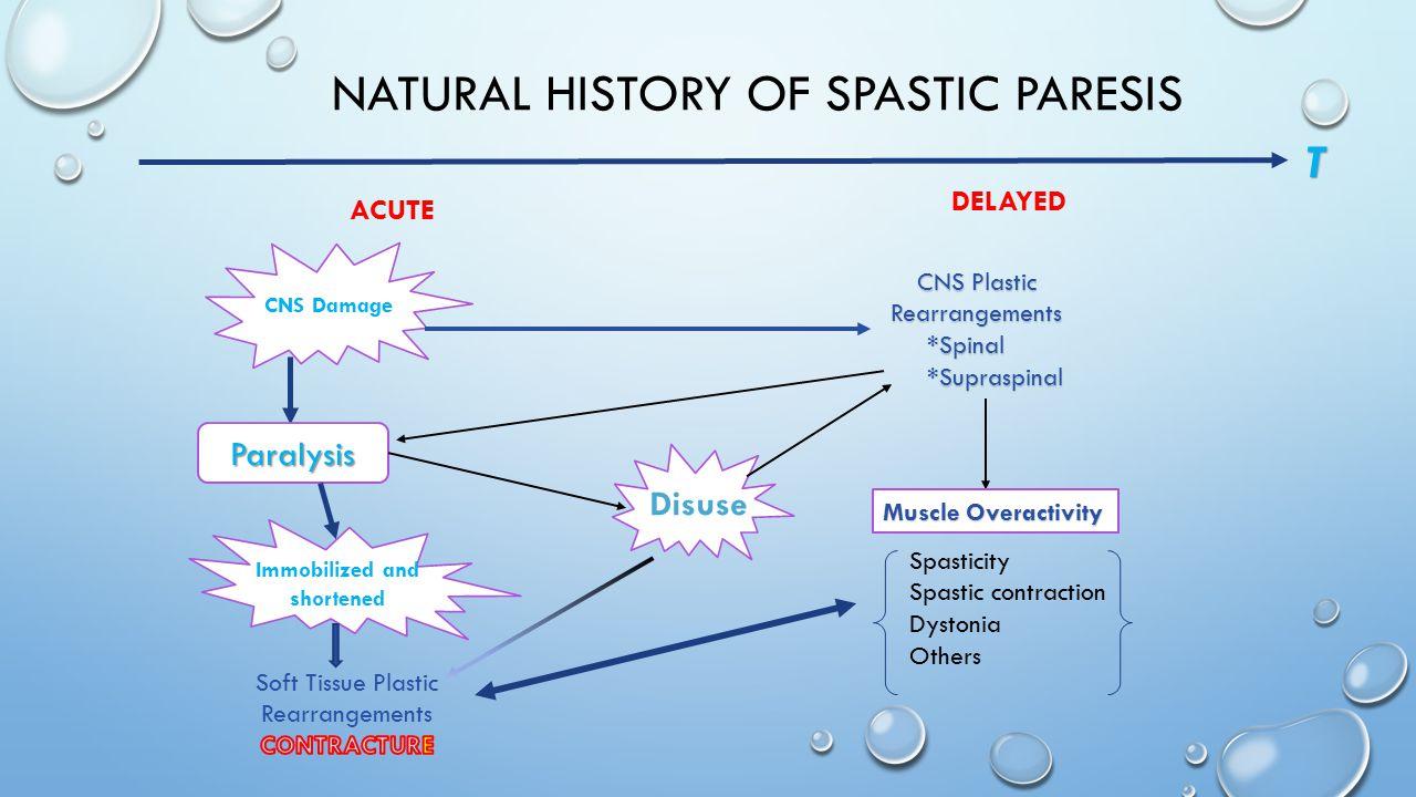 Natural History of Spastic Paresis