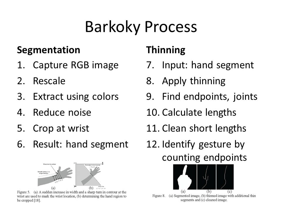 Barkoky Process Segmentation Thinning Capture RGB image Rescale