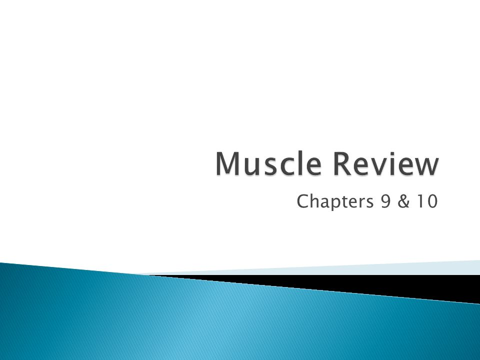 Muscle Review Chapters 9 & 10