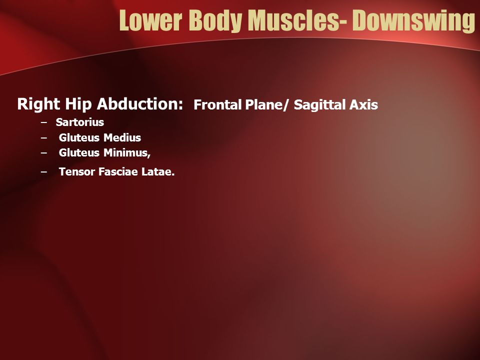 Lower Body Muscles- Downswing