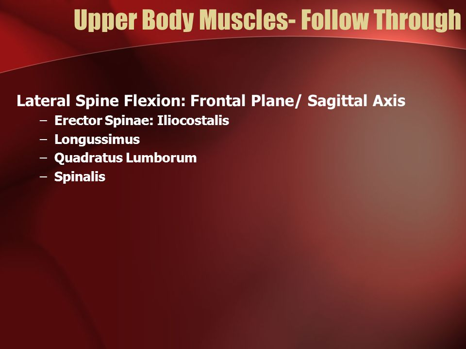 Upper Body Muscles- Follow Through