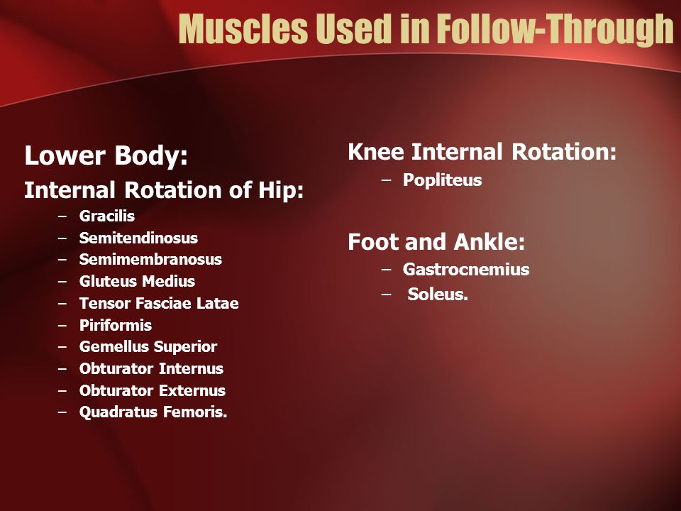 Muscles Used in Follow-Through