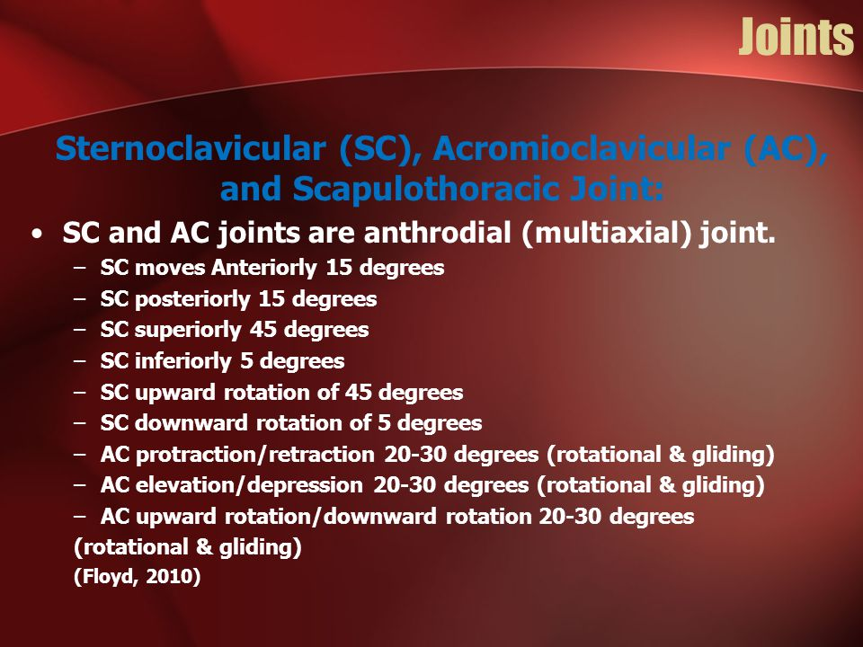 Joints Sternoclavicular (SC), Acromioclavicular (AC), and Scapulothoracic Joint: SC and AC joints are anthrodial (multiaxial) joint.