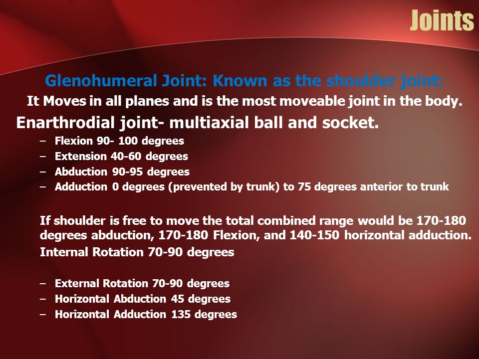 Joints Glenohumeral Joint: Known as the shoulder joint:
