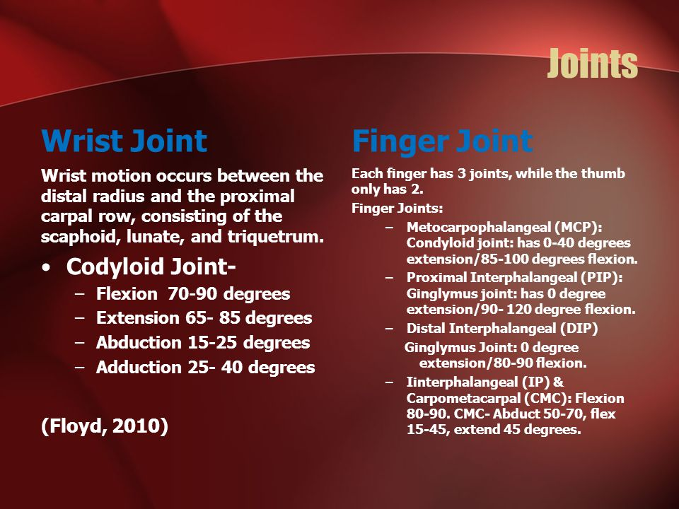 Joints Wrist Joint Finger Joint Codyloid Joint- (Floyd, 2010)