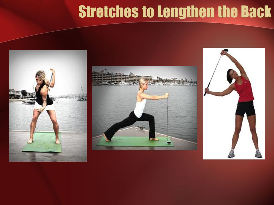 Stretches to Lengthen the Back