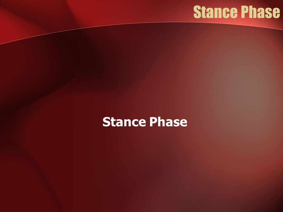 Stance Phase Stance Phase