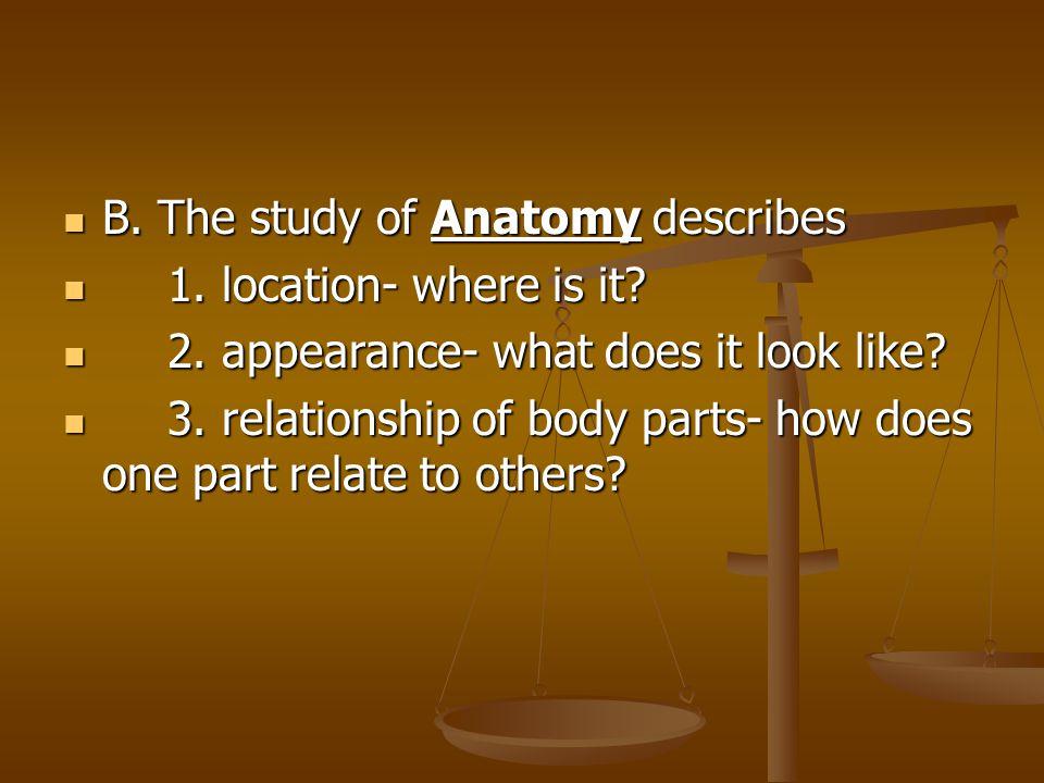 B. The study of Anatomy describes
