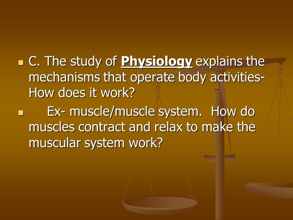 C. The study of Physiology explains the mechanisms that operate body activities-How does it work