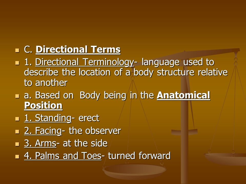 C. Directional Terms 1. Directional Terminology- language used to describe the location of a body structure relative to another.