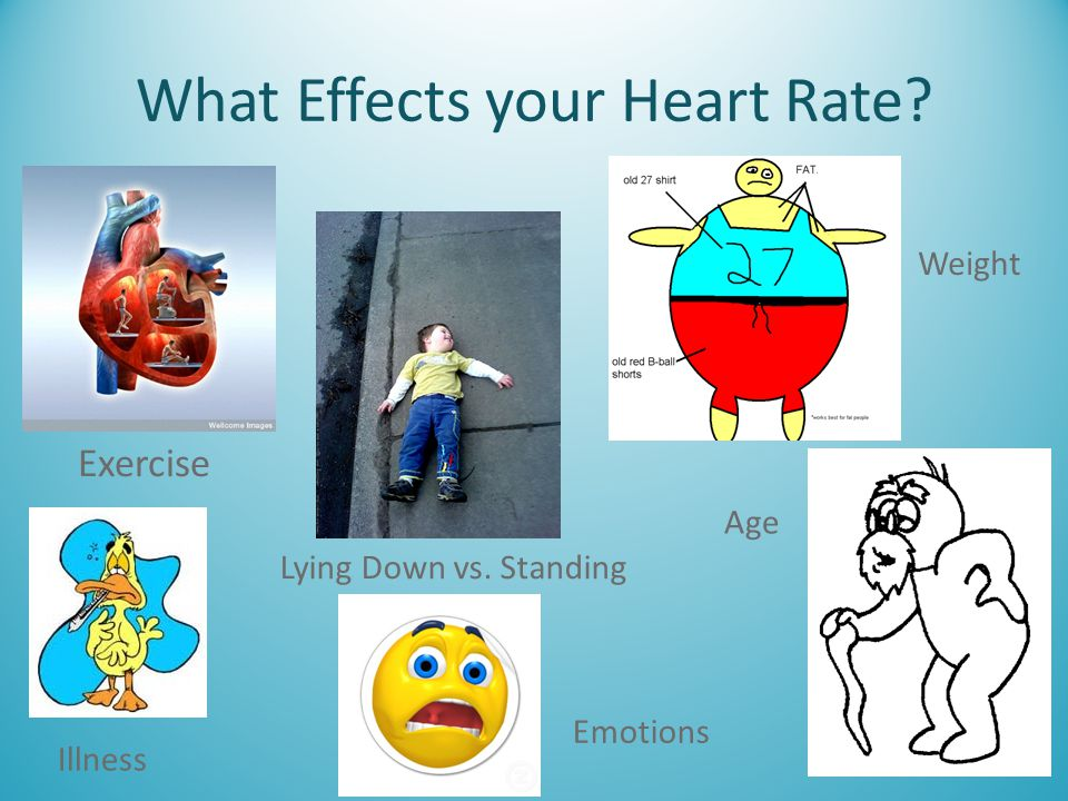 What Effects your Heart Rate