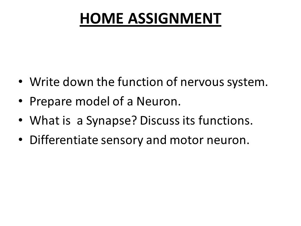 HOME ASSIGNMENT Write down the function of nervous system.
