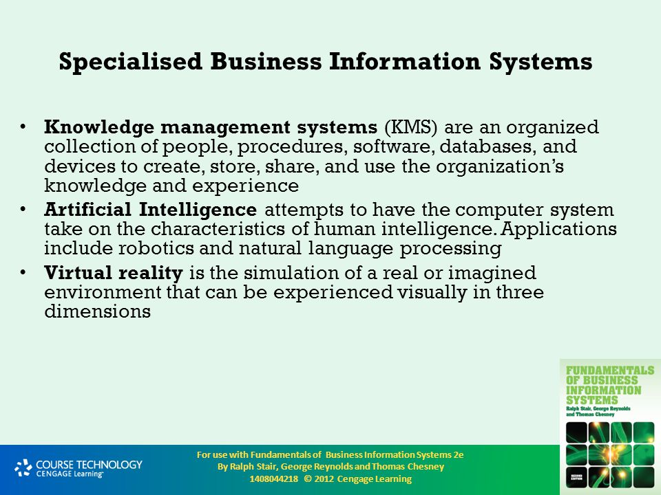Specialised Business Information Systems