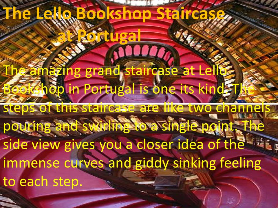 The Lello Bookshop Staircase at Portugal