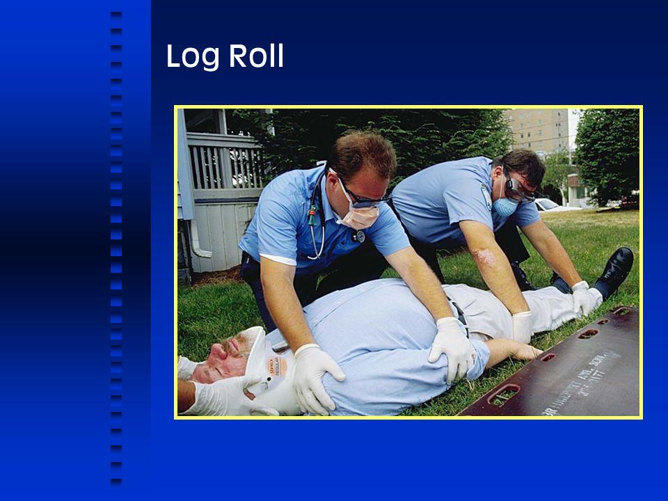 Log Roll 10