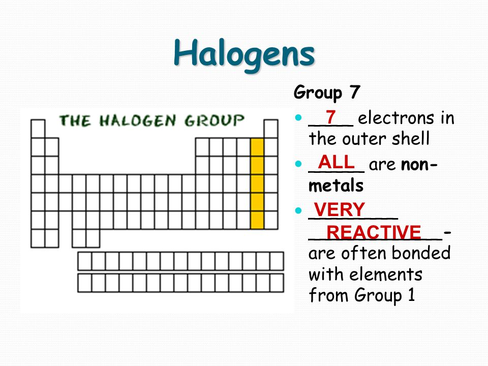 Halogens 7 ALL VERY REACTIVE Group 7 ____ electrons in the outer shell