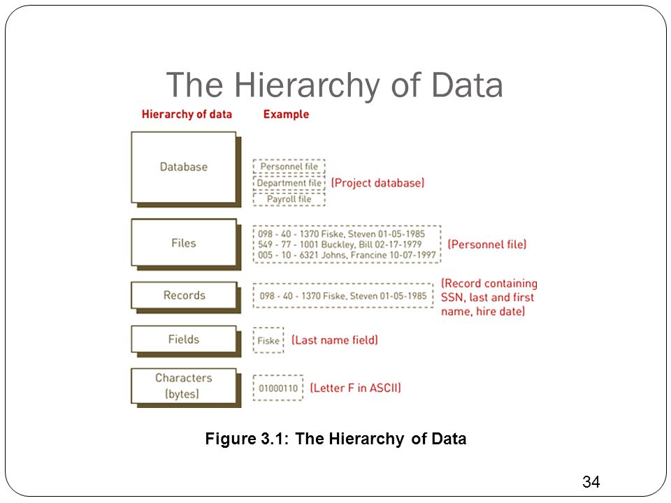 Figure 3.1: The Hierarchy of Data