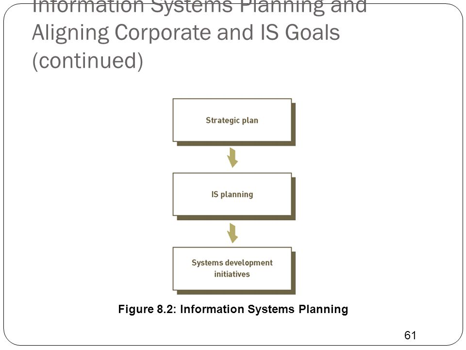 Figure 8.2: Information Systems Planning