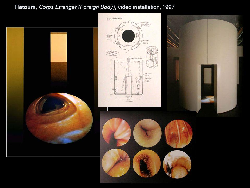 Hatoum, Corps Etranger (Foreign Body), video installation, 1997