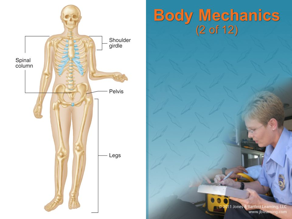 Body Mechanics (2 of 12)