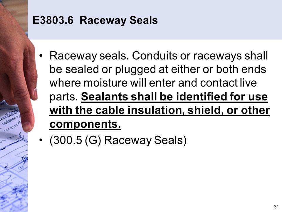 E3803.6 Raceway Seals