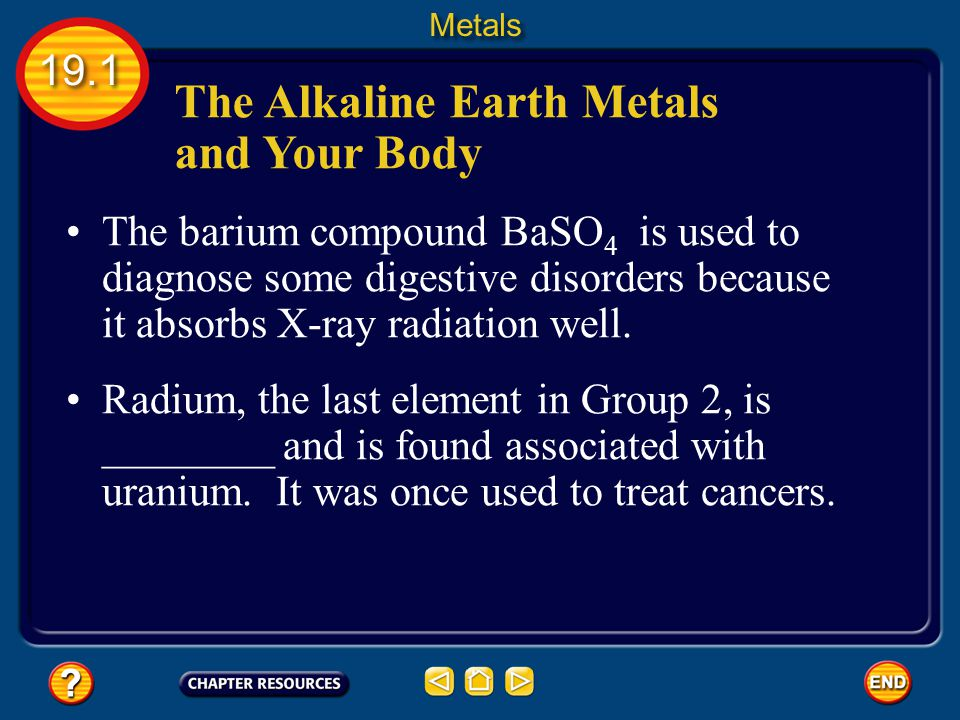 The Alkaline Earth Metals and Your Body