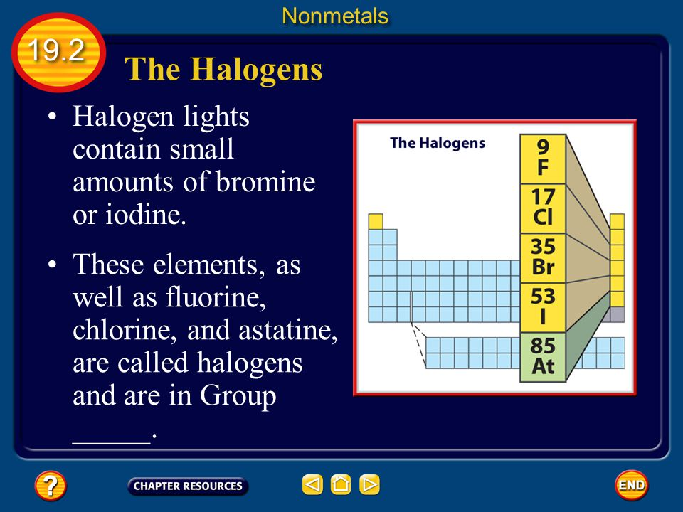 Nonmetals 19.2. The Halogens. Halogen lights contain small amounts of bromine or iodine.