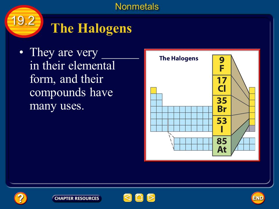 Nonmetals 19.2. The Halogens.