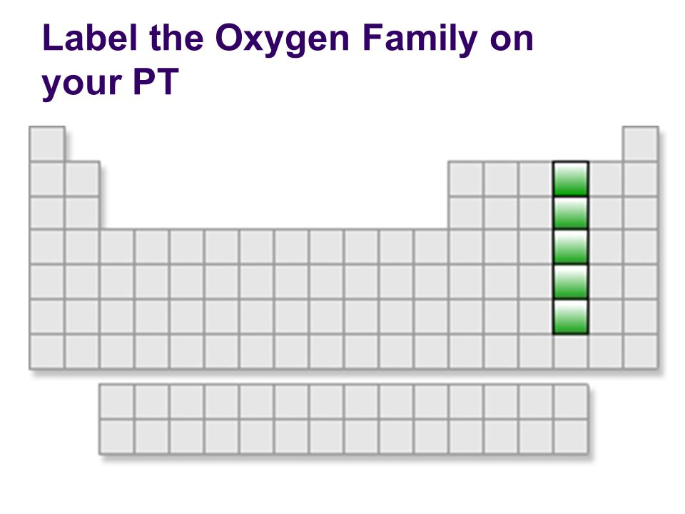 Label the Oxygen Family on your PT