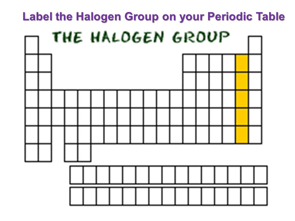 Label the Halogen Group on your Periodic Table